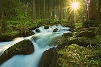 rivers-